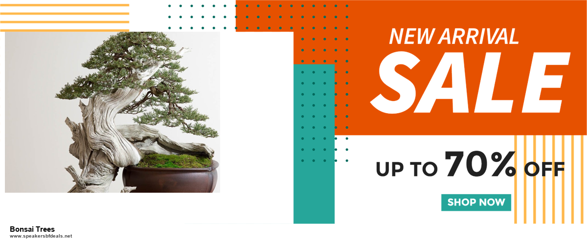 Top 10 Bonsai Trees Black Friday 2020 and Cyber Monday Deals